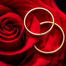 discount tungsten wedding rings