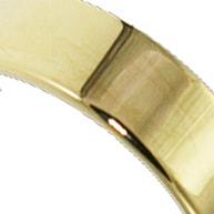 gold polished finish